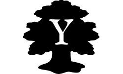 Yndexa.com