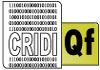 Grupo CRIDI: Qualificação